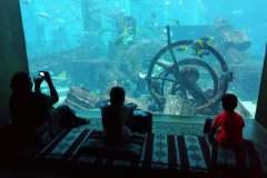 aquarium @Atlantis The Palm