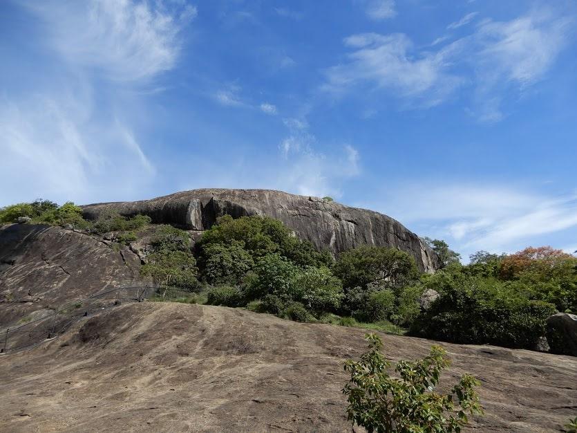 Rotstempel, Dambulla