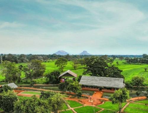 Wellnessreis Sri Lanka