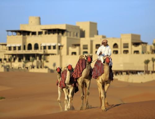 Citytrip Ontdek Dubai en Abu Dhabi